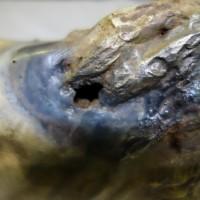 Bronze Guss restaurieren reparieren